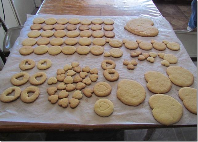 2011-2-12 cookies (86)