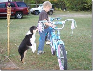 2010-11-05 bikes (22)