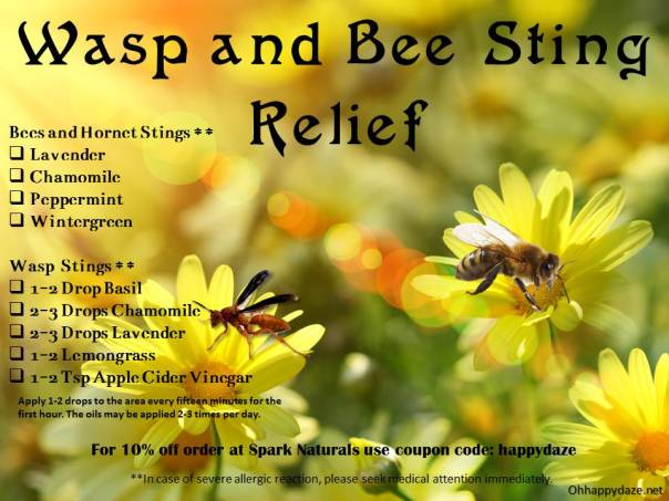 Wasp and Bee Sting Remedy
