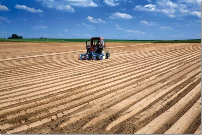 large-scale-monoculture-farming-is-destroying-our-soil