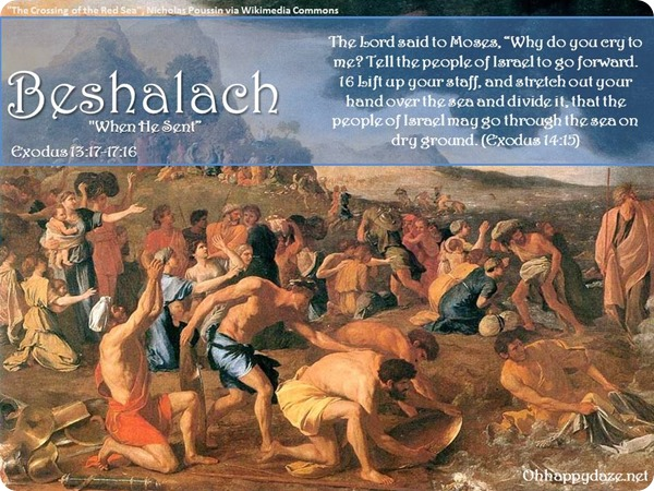Image result for beshalach torah portion images