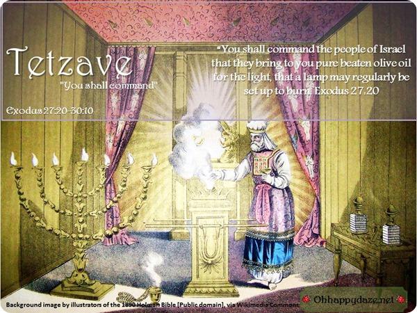 Image result for torah portion tetzaveh images