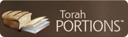 torahportion522
