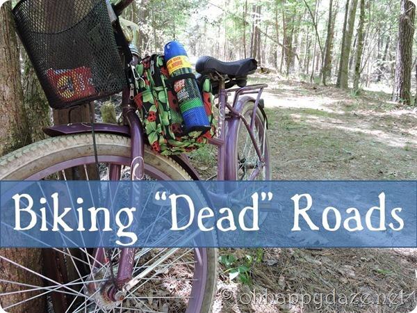 Biking Dead Roads