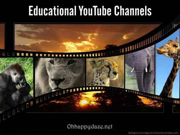 edu youtube