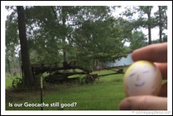 Eggcellent Love (24)